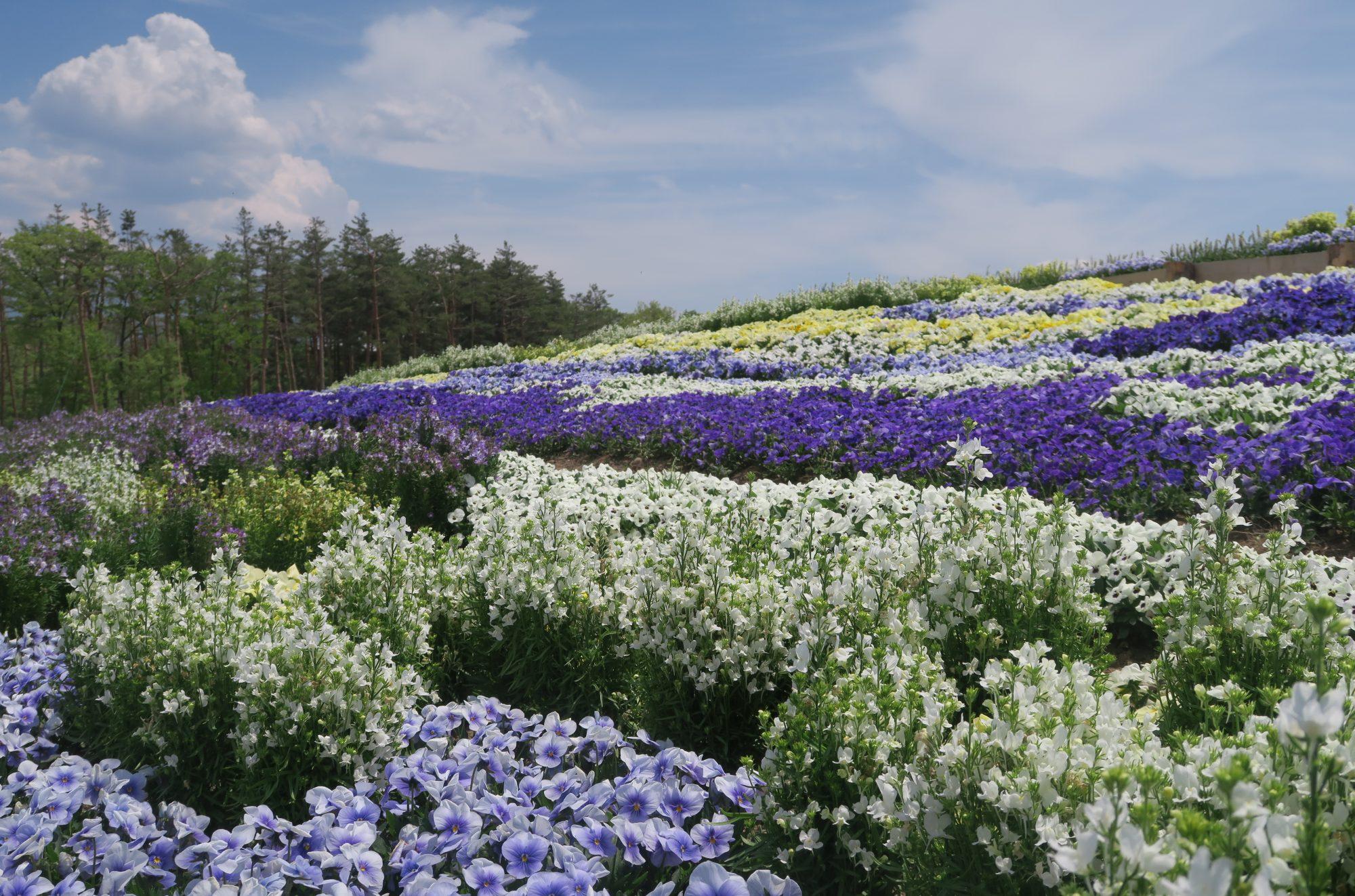 一般社団法人 長野県産業環境保全協会
